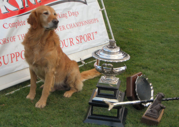 2006 IGL retriever champion, Marcus Maybe Wadesmill